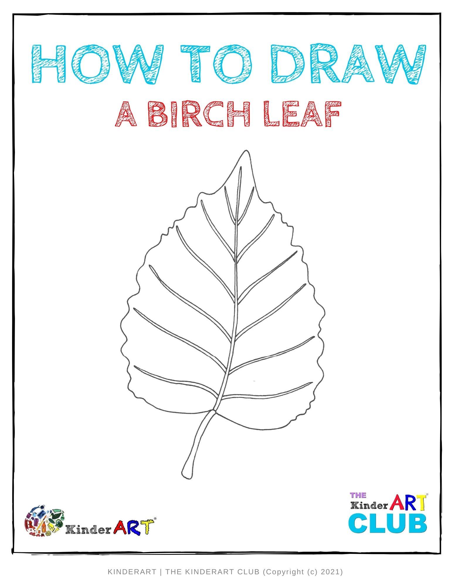 draw_birch_leaf