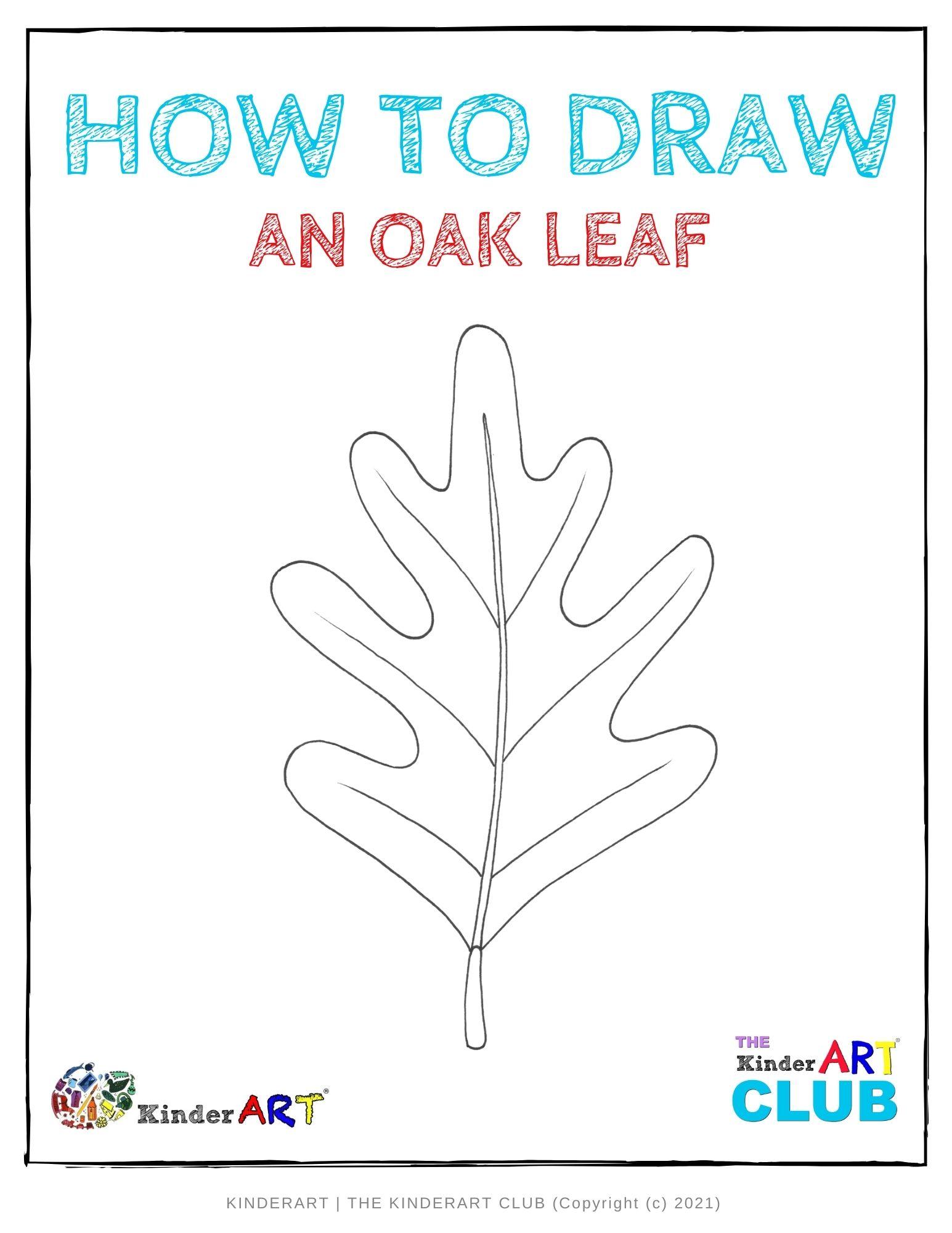 draw_oak_leaf