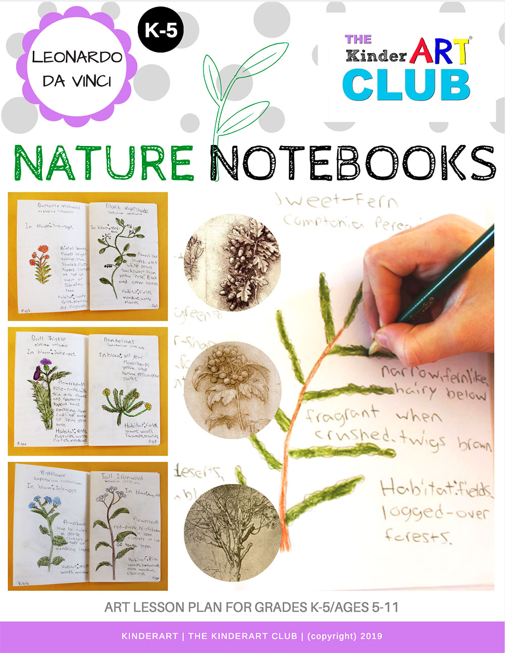 leonardo_nature_notebooks