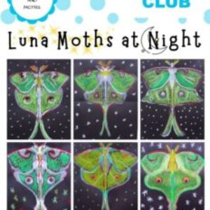 luna_moths